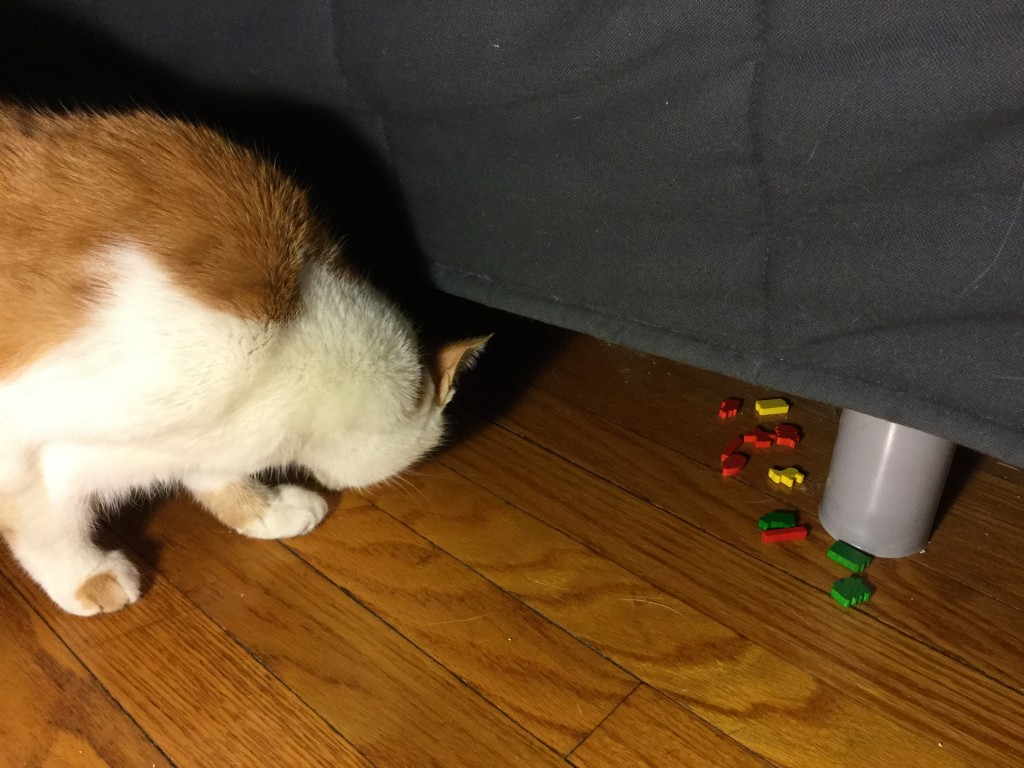 The humans will never find the important colorful bits under here!