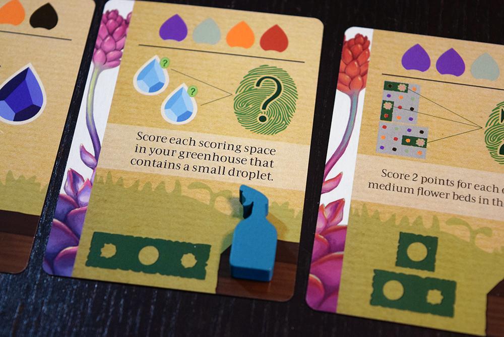 Succulent - token on card